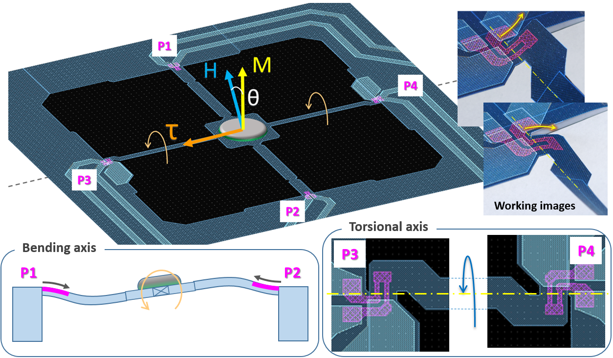 drawing illustrating the principle of operation of the NANOSENSORS SD-MSS-1KTM membrane-type surface stress sensor dedicated for torque magnetometry