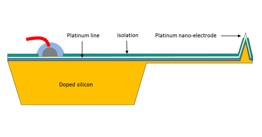 Schematic of a wired and insulated NANOSENSORS Doped silicon ElectroChemical AFM Probe for combined AFM and ElectroChemical studies (EC-Probes).