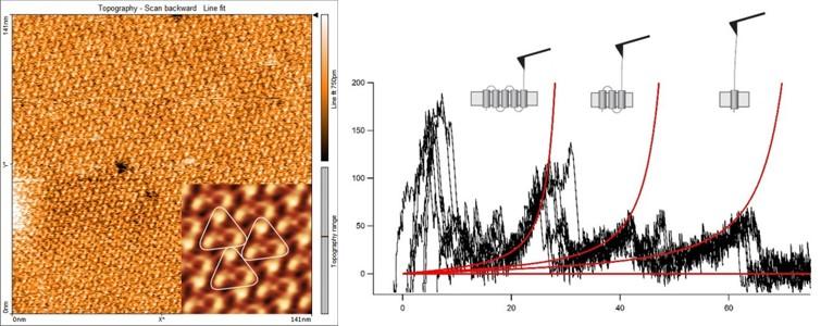 BR image & spectroscopy