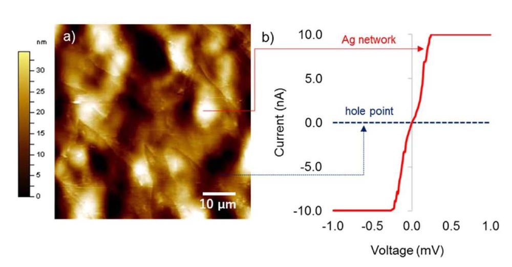"Figure 6 from Mir & Ochiai ""Conductive Polymer-Ag Honeycomb Thin Film: The Factors Affecting the Complexity of the Microstructure* a) Topography SPM image, and b)I-V curves of the polymer-Ag honeycomb film on HOPG (preparation conditions for polymer-Ag honeycomb film: poly(NVK-co-MAH)-g-PMMA from PMMA (Mn=2100), 0.3 mg mL−1 and 50μL; measurement conditions: topography SPM image was taken by contact mode using microfabricated PtSi- coated cantilever (f0: 15 kHz, C: 0.2 N m−1), and the I-V curves were taken at specific points. NANOSENSORS PtSi-CONT AFM probes were used for the Current-sensing scanning probe microscopy (CSSPM) images"