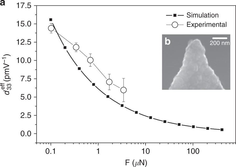 "Figure 4 from ""Converse flexoelectricity yields large piezoresponse force microscopy signals in non-piezoelectric materials"" by Amir Abdollahi et al.: Study of converse flexoelectricity induced at the tip apex of an atomic force microscope cantilever as a function of the applied force. a Effective piezoelectric coefficient as a function of applied force for the SrTiO3 crystal. Filled squares correspond to the values obtained after the simulation. Empty circles correspond to the experimental values obtained with a NANOSENSORS CDT-FM AFM tip with a cantilever of medium stiffness (k ≈ 2.8 Nm−1) coated with doped diamond. The error bars correspond to the error of the linear fitting of the experimental data, which correlates the measured electromechanical amplitude of oscillation Δh with the Vac applied voltage. b The effective contact radius a scales with the force, and is determined by the tip radius. The experimental tip radius is obtained after the measurement of the nanoscale electromechanical response from the scanning electron microscopy image of the used tip. In this case, the tip radius of the diamond coated tip is 105 nm, and is observed to keep a spherical shape after the measurements"