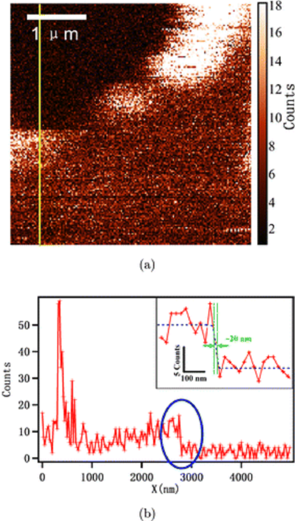 "Fig. 6. from ""High-resolution imaging of graphene by tip-enhanced coherent anti-Stokes Raman scattering "" by Xiaolong Kou  et al. (a) TECARS imaging of graphene. (b) Signal intensity measurement of the yellow line in (a). First single atom layer TECARS (tip-enhanced coherent anti-Stokes Raman scattering ) imaging on Graphene with the highest resolution about 20nm"