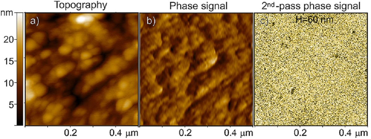 "Figure 7 from ""From Polymer to Magnetic Porous Carbon Spheres: Combined Microscopy, Spectroscopy, and Porosity Studies"" by F. Cesano et al: Three images described from left to right of Fe3O4-based carbon microspheres: first image on the left (a) AFM topography, middle image (b) the related phase signal, and the image on the right (c) MFM phase shift images at H = 60 nm lift height obtained in a second scan. The phase shift range in (c) is ~ 0.6 m°."