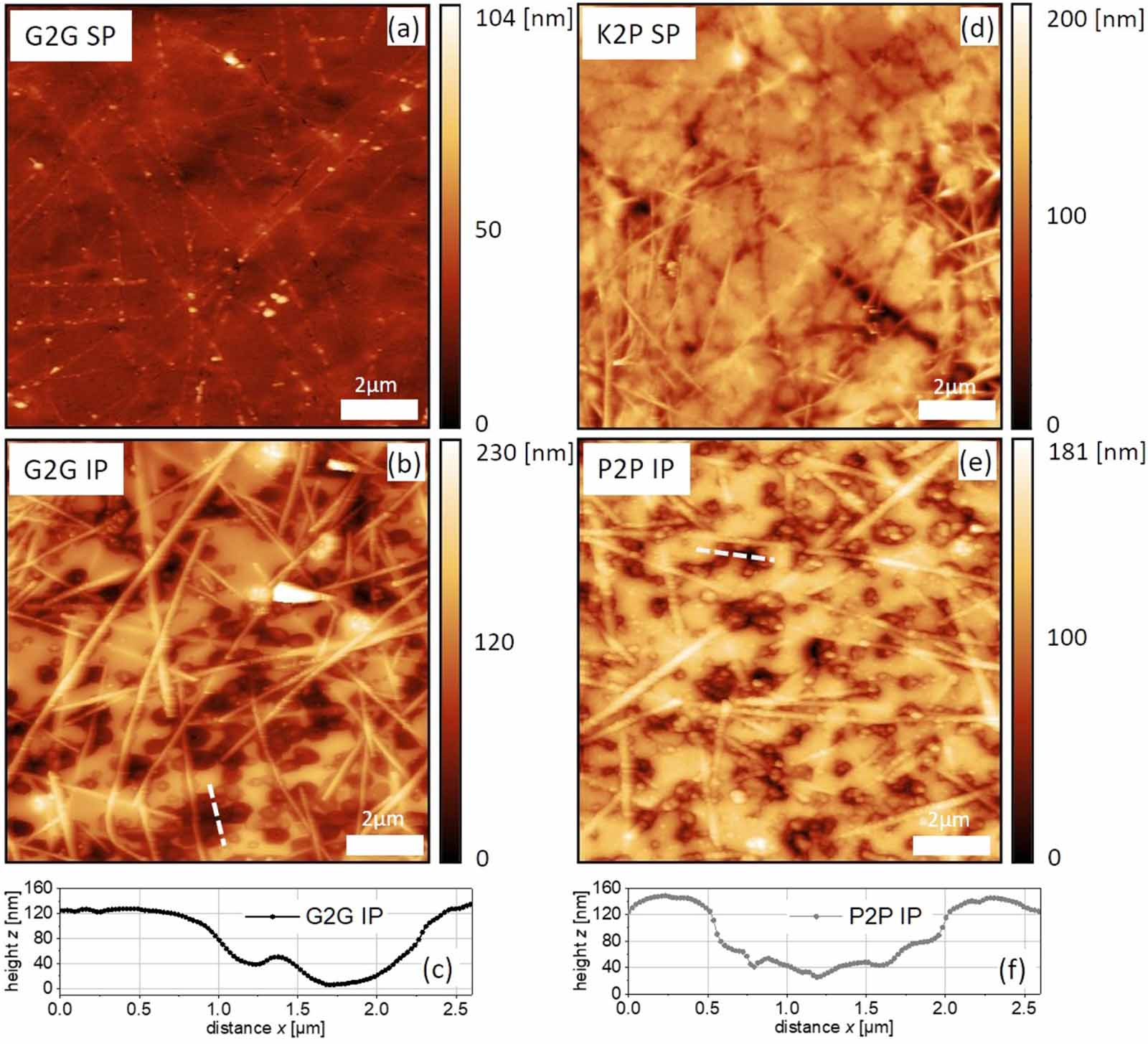 "Figure 5. from ""Gentle plasma process for embedded silver-nanowire flexible transparent electrodes on temperature-sensitive polymer substrates "" by Lukas Kinner et al.: The sample surfaces were characterized with atomic force microscopy (AFM) in tapping mode, using high-resolution NANOSENSORS™ SuperSharpSilicon™ SSS-NCHR AFM probes. AFM images of the AgNW electrodes for: (a) G2G SP, (b) G2G IP, (c) height profile for the dashed line marked in (b), (d) K2P SP, (e) P2P IP, (f) height profile for the dashed line marked in (e)."