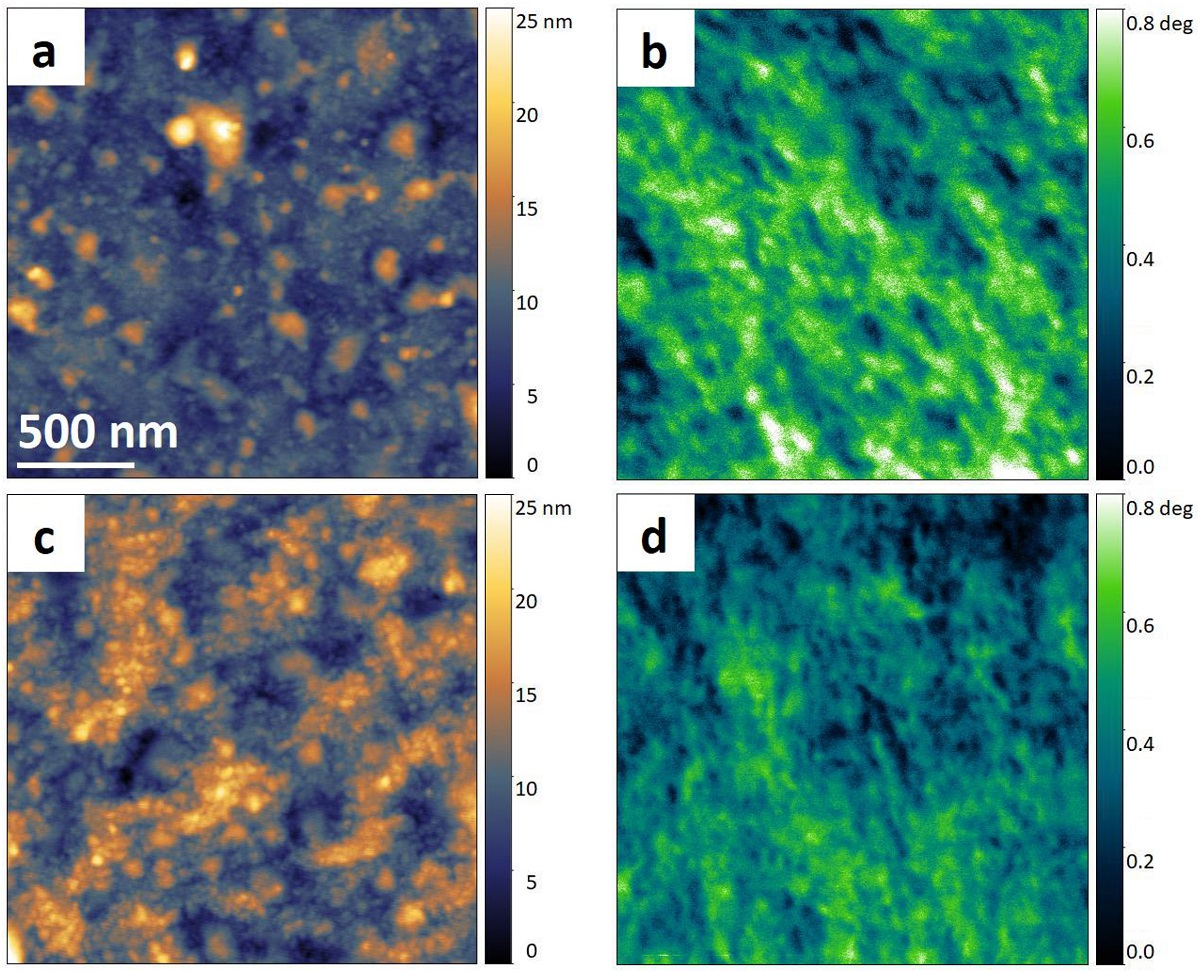 "Fig. 6 from ""On the magnetic nanostructure of a Co–Cu alloy processed by high-pressure torsion"" by Martin Stückler et al.: 2 μm × 2 μm AFM scans of (a) as-deformed state and (c) 300 °C annealed state. The corresponding MFM scans of the as-deformed and 300 °C annealed state are shown in (b) and (d) respectively. The axial direction of the HPT specimen points out of the plane, the shear direction is in horizontal direction. The lateral scale bar in (a) applies to all scans. The minimum height and phase signal values are shifted to zero for visualization purposes. NANOSENSORS SSS-MFMR magnetic AFM probes optimized for high resolution magnetic force microscopy were used"